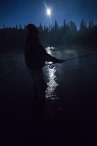 Flugfiskare4 i månljus