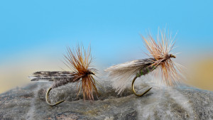 Kings River Caddis SBS-1