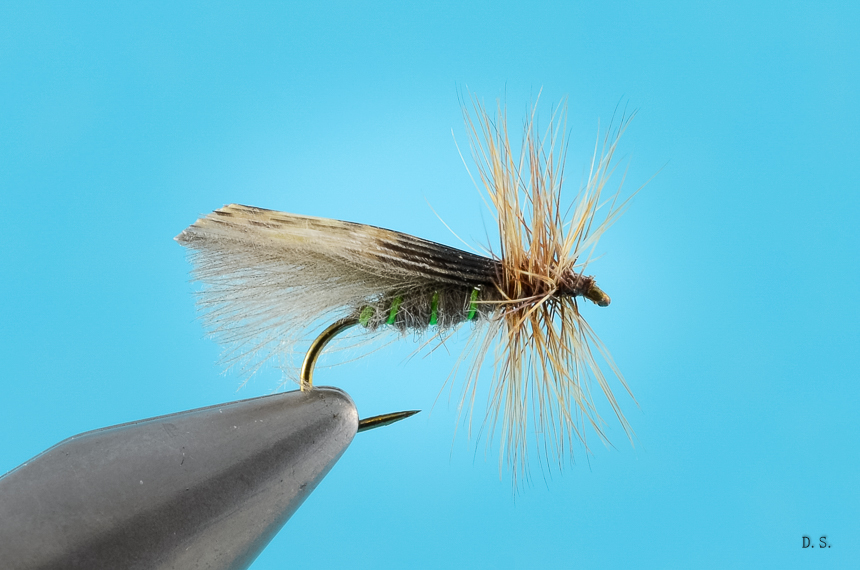 Kings River Caddis SBS-12
